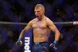 TJ Dillashaw Vs Henry Cejudo Odds & Betting Preview